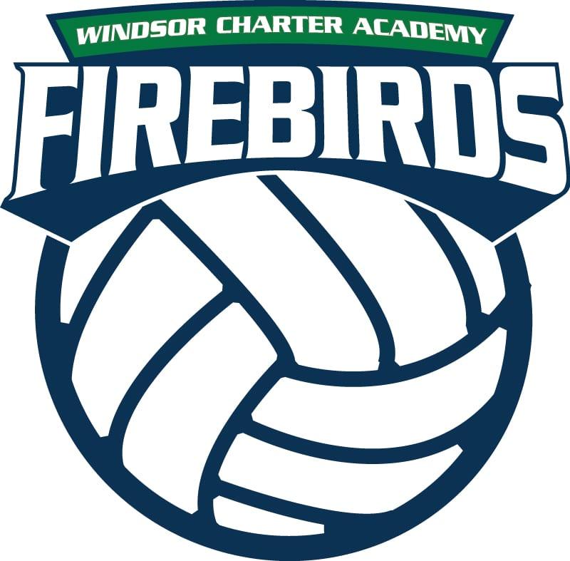 Volleyball Logo Web
