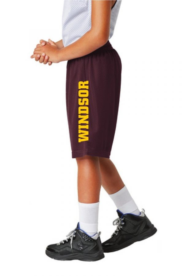 WMS Wrestling Youth Maroon Mesh Shorts